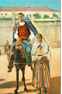 Dalmatinski domoronci